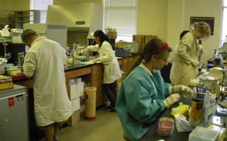 Students in Microbiology Research Lab