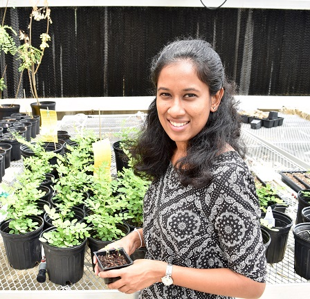 Chathurani Ranathunge Arachchige Receives Botanical Society Award