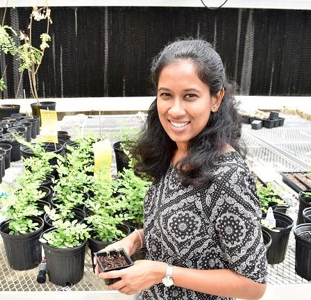 Chathurani Ranathunge Arachchige Receives Botanical Society Award